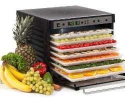 Рейтинг лучших сушилок для фруктов и овощей