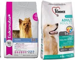 Рейтинг кормов для собак — полезная и вкусная еда для четверолапого друга